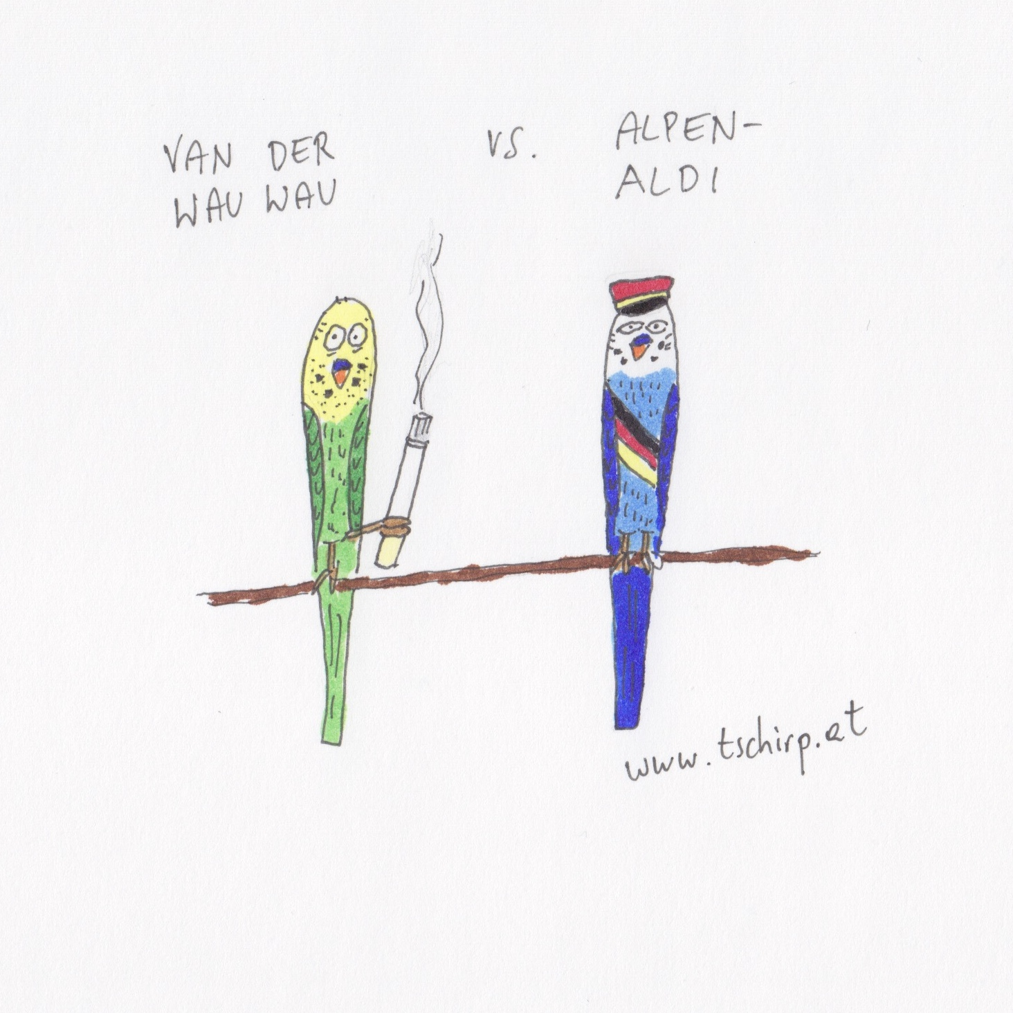 Präsidentschaftswahl, Van der Bellen, Hofer