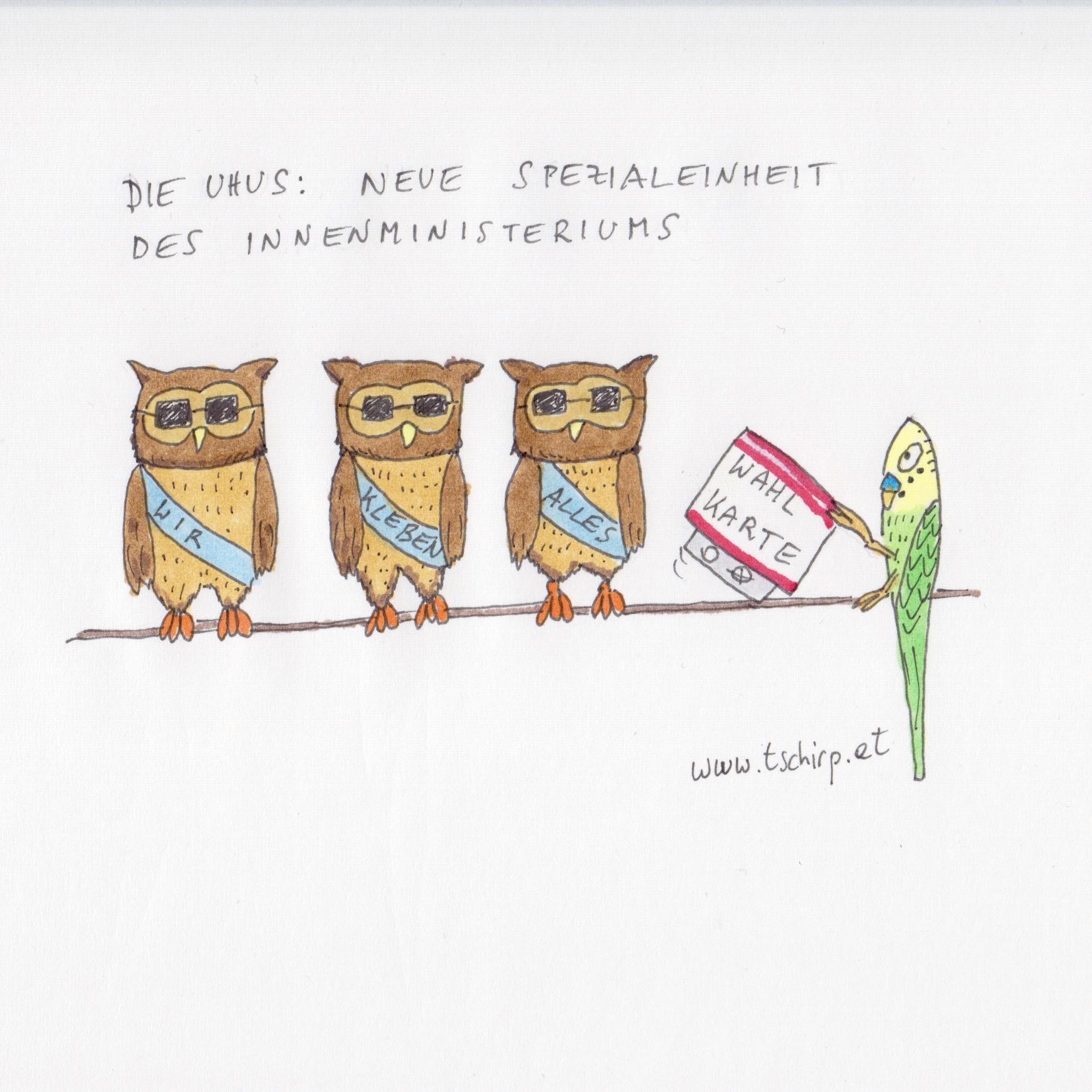 Briefwahl, Innenministerium, Bundespräsidentschaftswahl, Österreich, Wellensittich