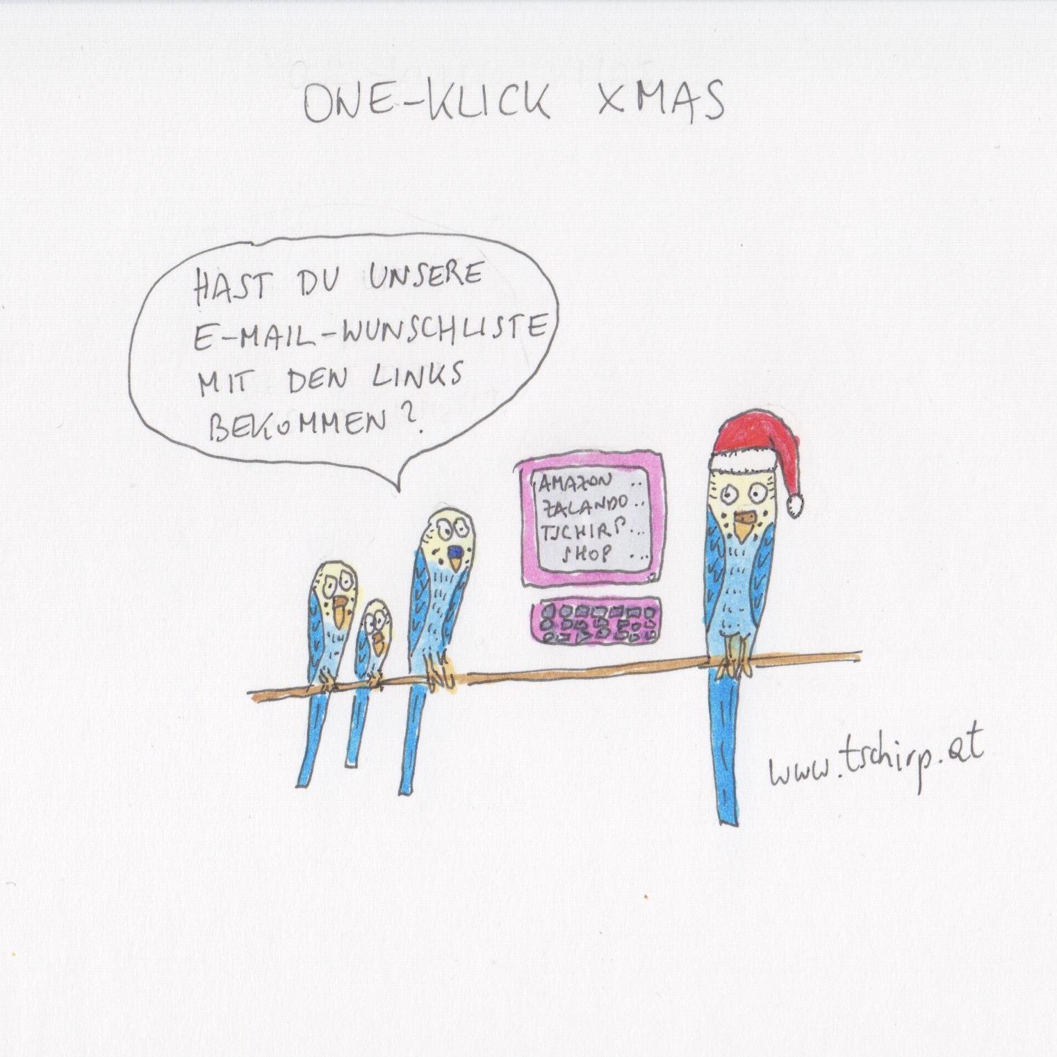 Advent, Weihnachten, Wunschliste, Weihnachtszeit, Wellensittich