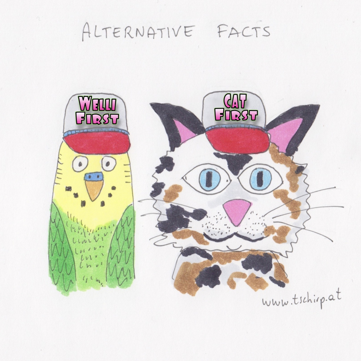 Alternative Facts, Wellensittich, Katzen, Trump, Falschmeldungen