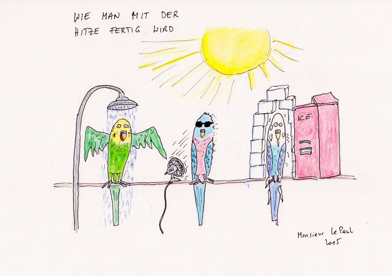 Hitze, Hitzeschlacht, was macht man gegen die Hitze