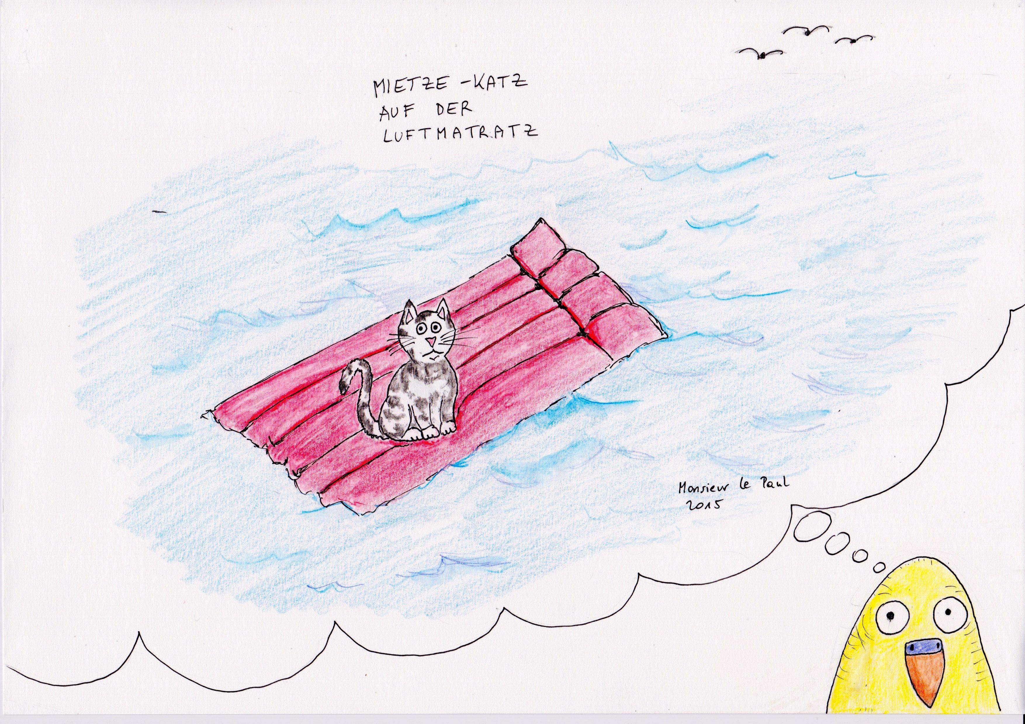 Katze, Luftmatrazze, Traum, Wellensittich