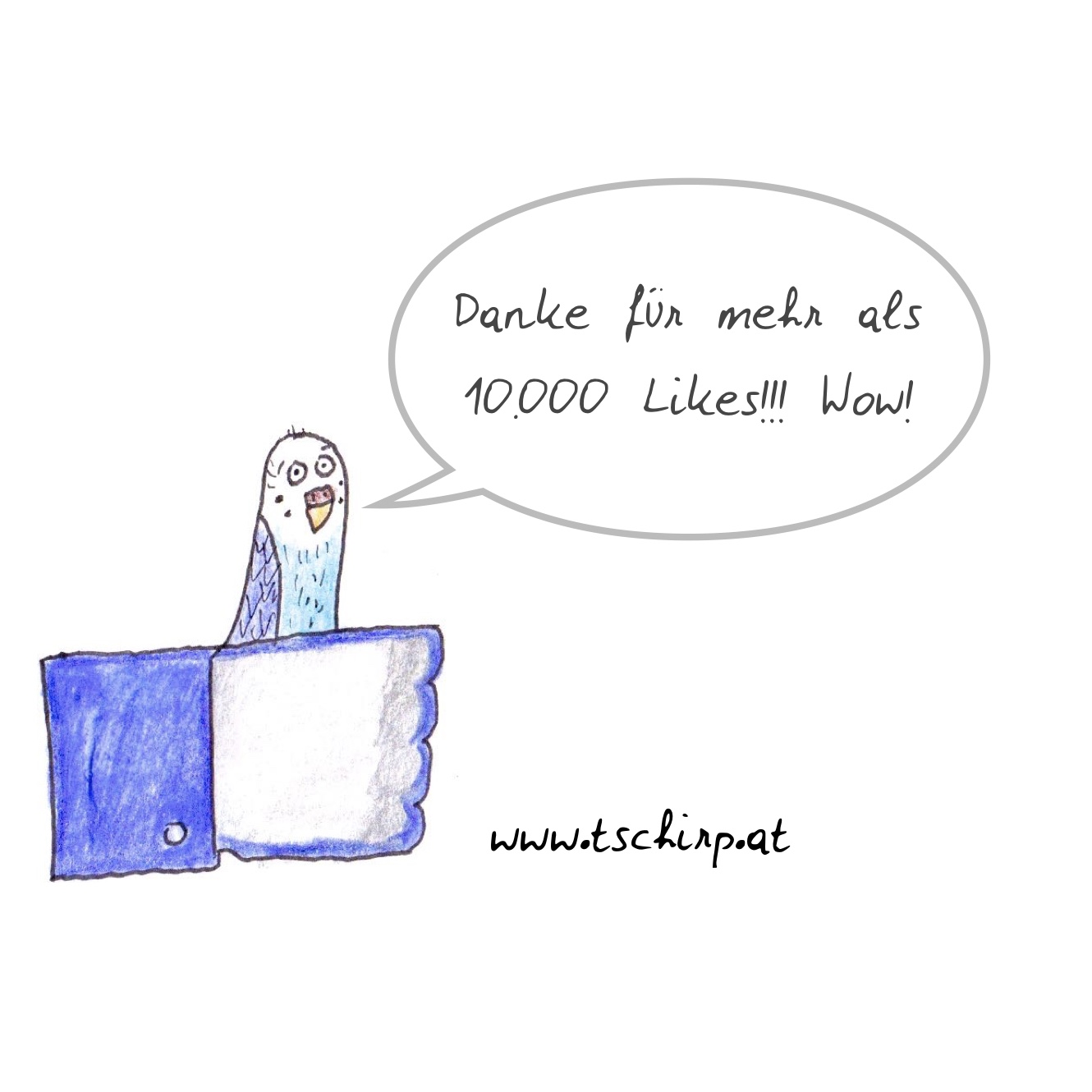 10000 likes, Facebook, Tschirp, Wellensittich